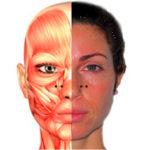 Уколы ботокса в нос