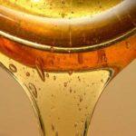 Как избавиться от целлюлита с помощью меда