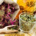 Травы для очищения кожи лица